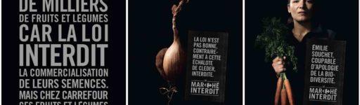 Le «marché interdit» de Carrefour : vraie stratégie RSE ou greenwashing ?
