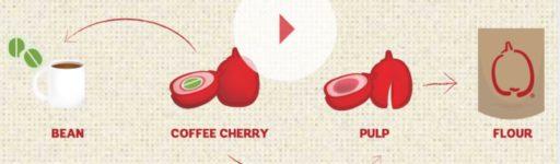 Exploiter les co-produits pour transformer les déchets en ressources, l'exemple du café